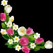 Tavaszi virágok színes falmatrica