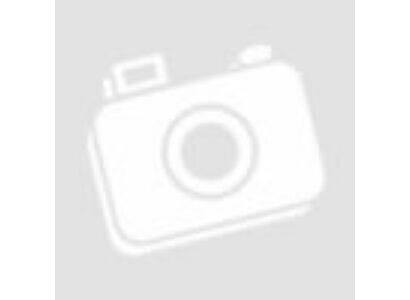 Manchester United falmatrica