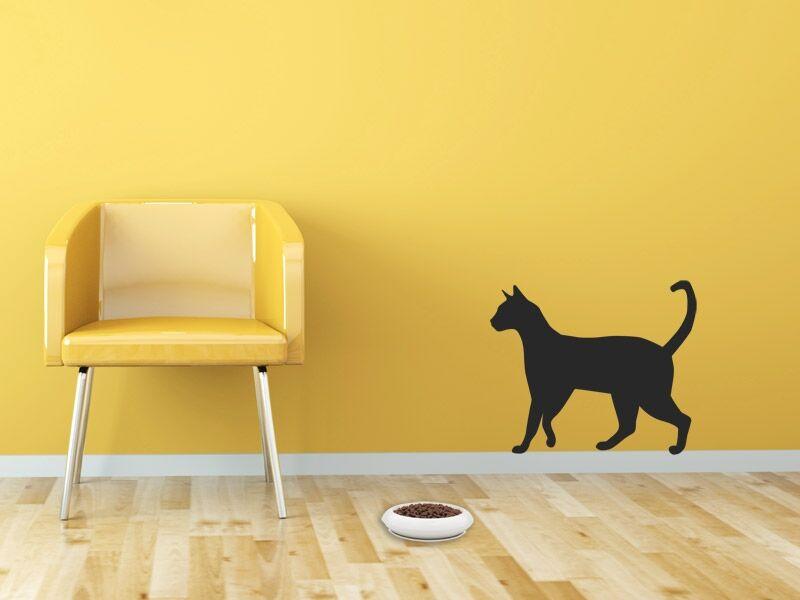 Macska falmatrica