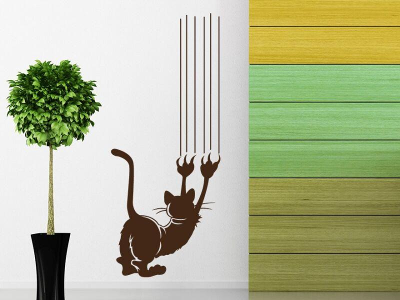 Karmoló macska falmatrica