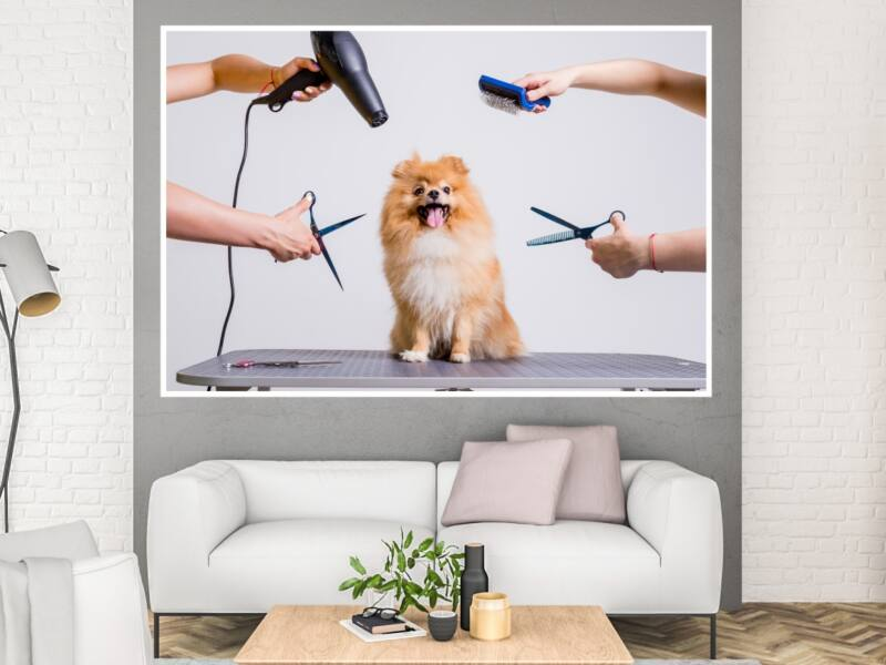 Kutyakozmetika - Öntapadós poszter