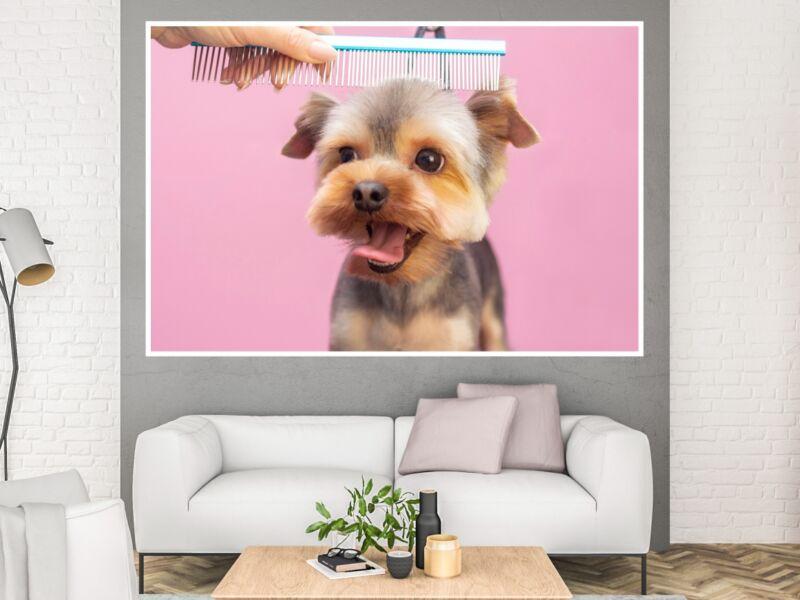 Kutyakozmetika 2 - Öntapadós poszter