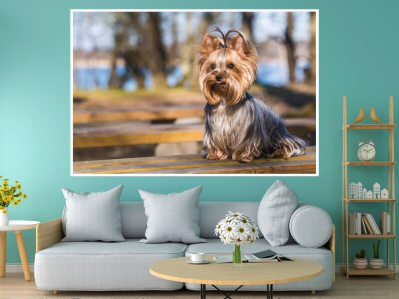 Yorkshire Terrier - Öntapadós poszter