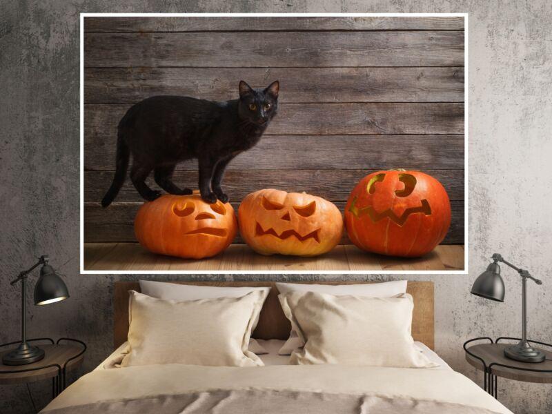 Macskák 14 - Öntapadós poszter