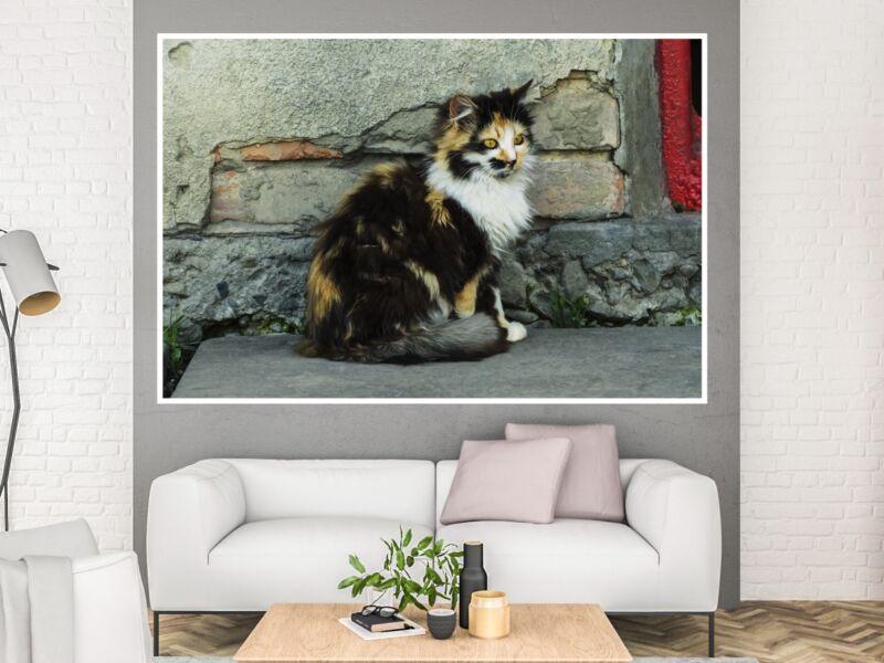 Macskák 18 - Öntapadós poszter