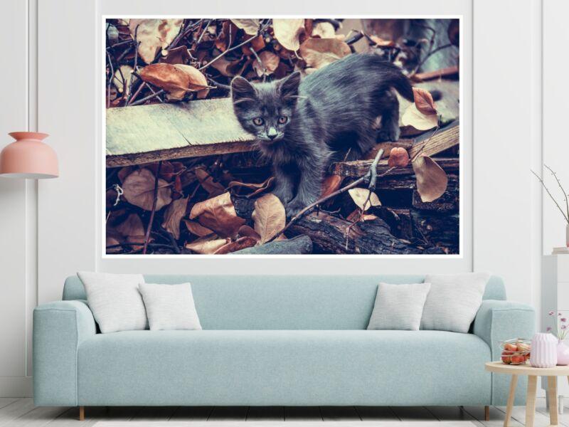 Macskák 2 - Öntapadós poszter
