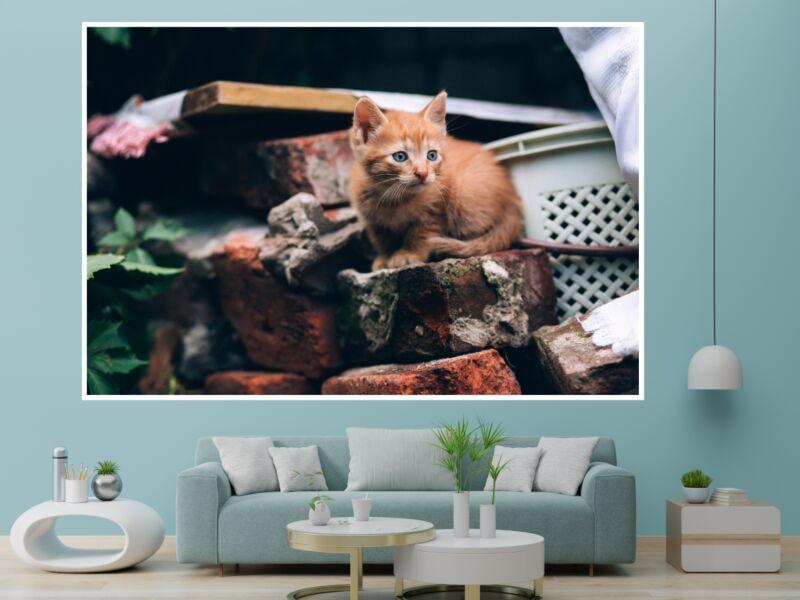 Macskák 4 - Öntapadós poszter