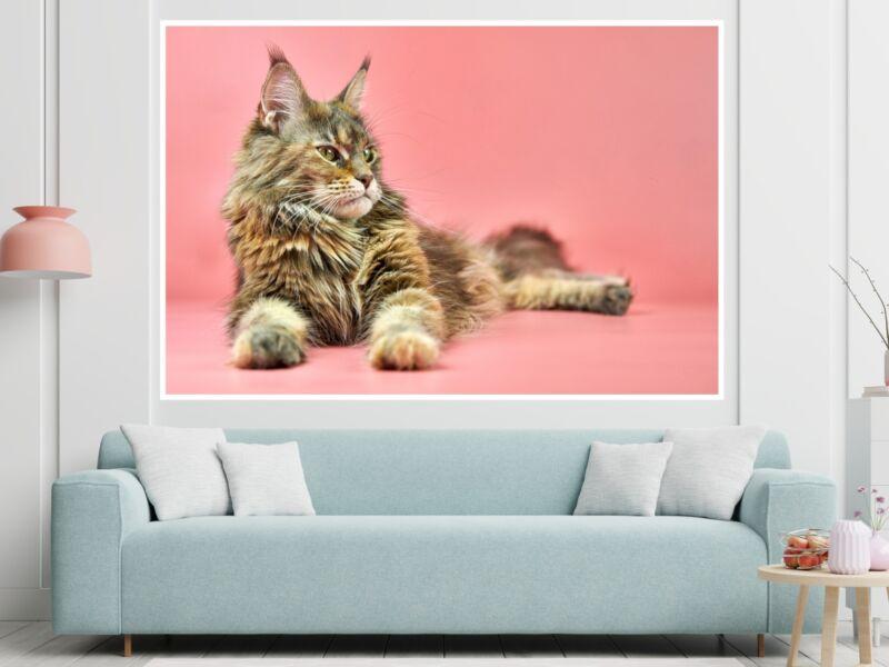Macskák 5 - Öntapadós poszter