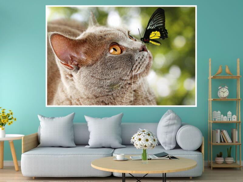 Macskák 8 - Öntapadós poszter