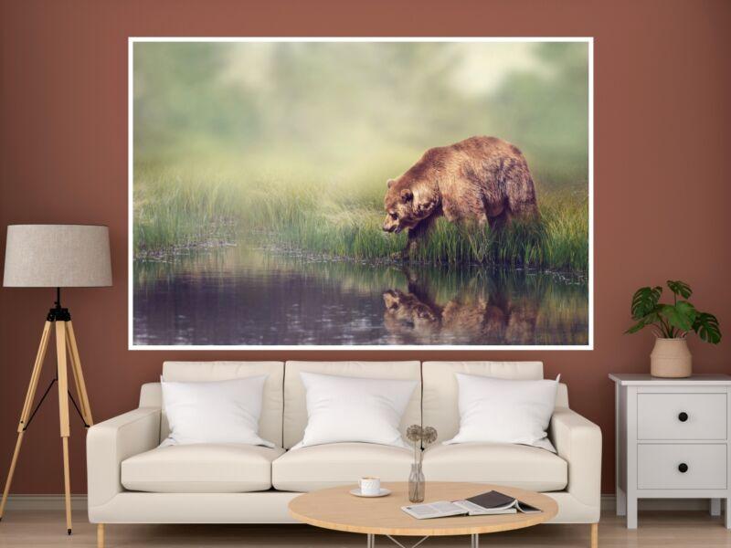 Barna medve 1 - Öntapadós poszter