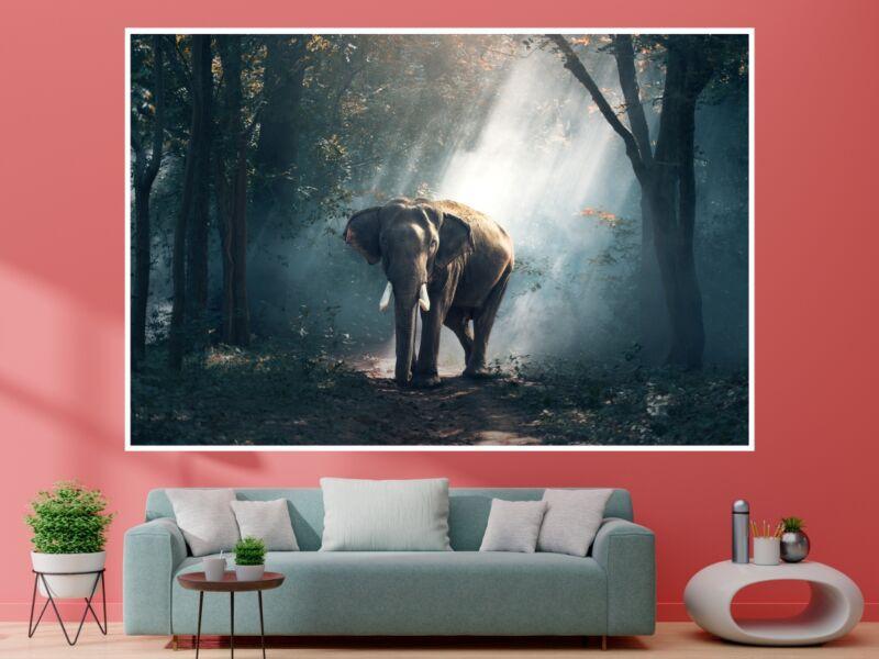 Elefánt 1 - Öntapadós poszter