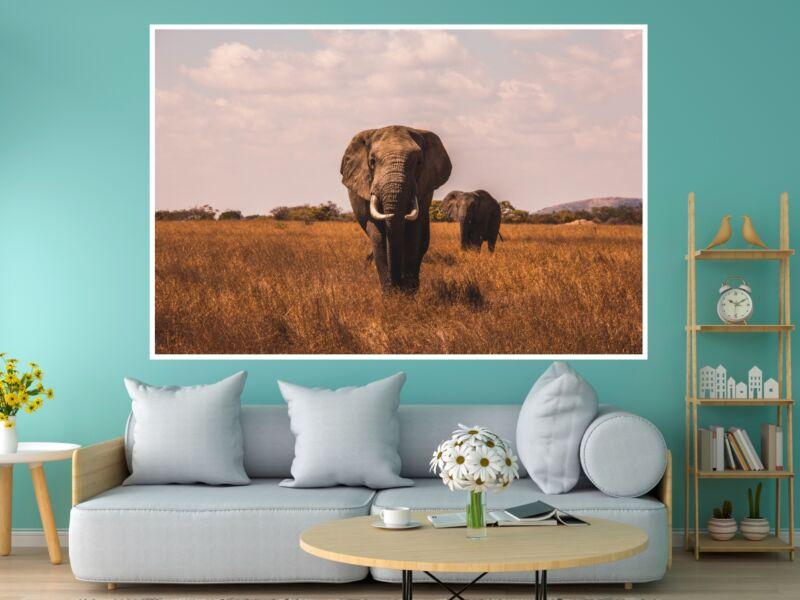 Elefánt 2 - Öntapadós poszter