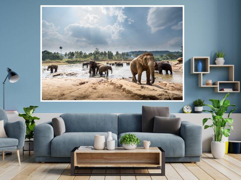 Elefánt 3 - Öntapadós poszter