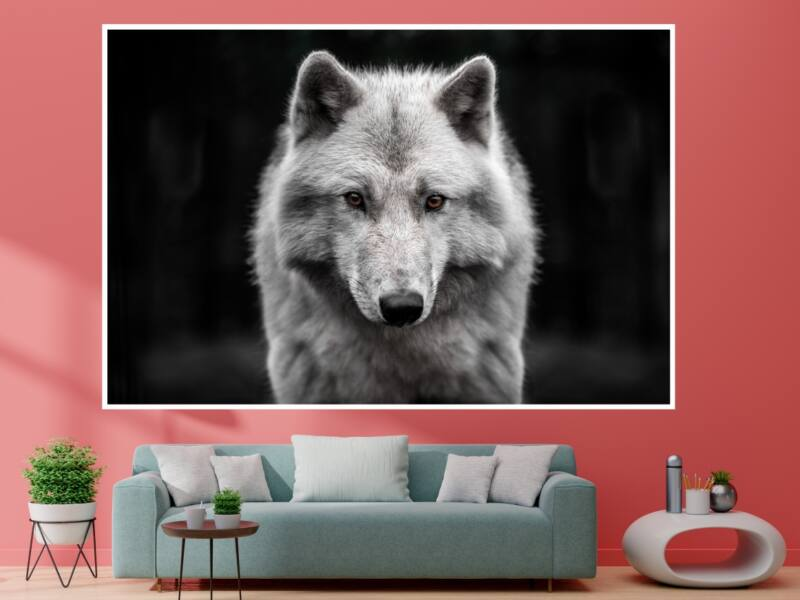 Farkas 1 - Öntapadós poszter