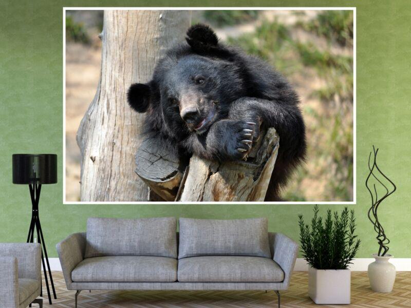 Fekete medve 1 - Öntapadós poszter