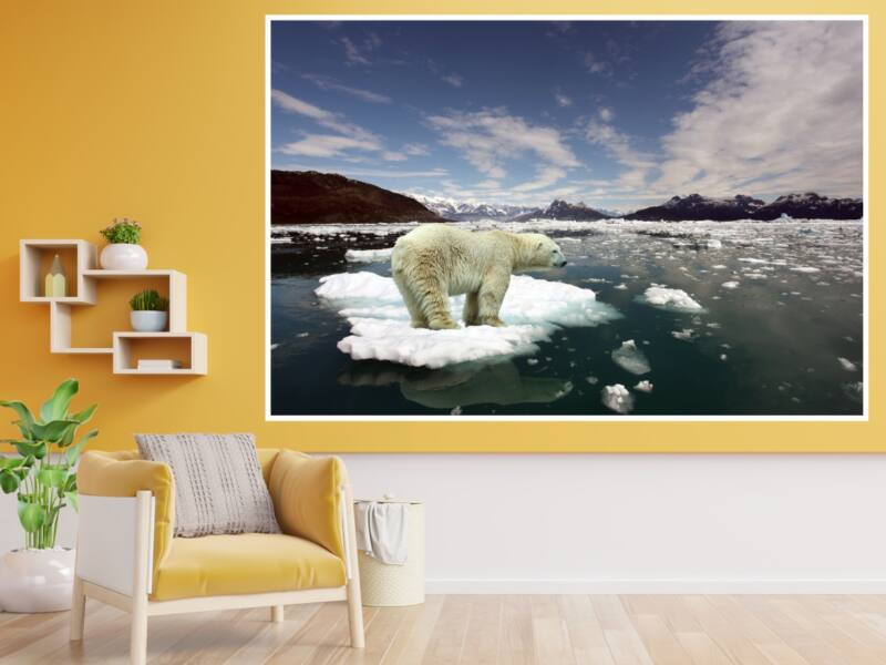 Jegesmedve 1 - Öntapadós poszter