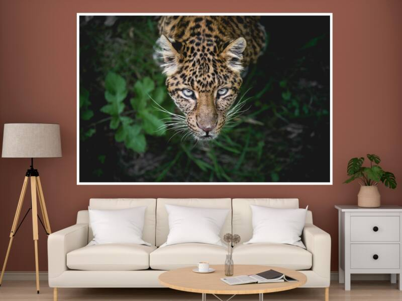 Leopárd 1 - Öntapadós poszter