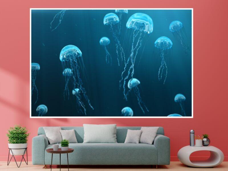 Medúzák - Öntapadós poszter