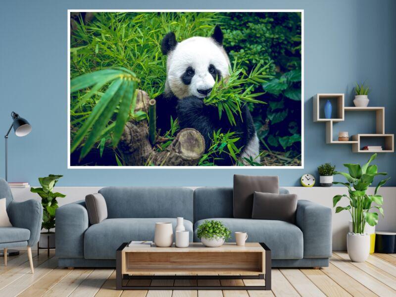 Panda 1 - Öntapadós poszter