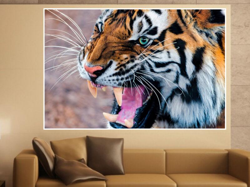 Tigris 03 Öntapadós Poszter