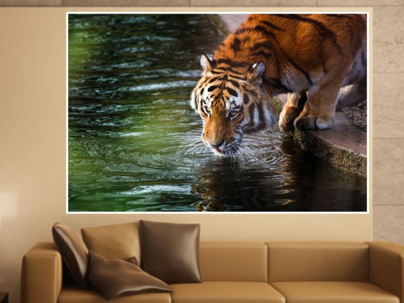Tigris 04 Öntapadós Poszter