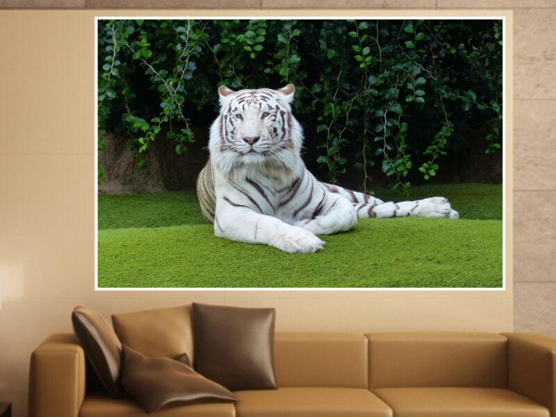 Tigris 09 Öntapadós Poszter