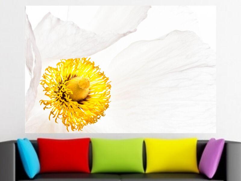 makro virág