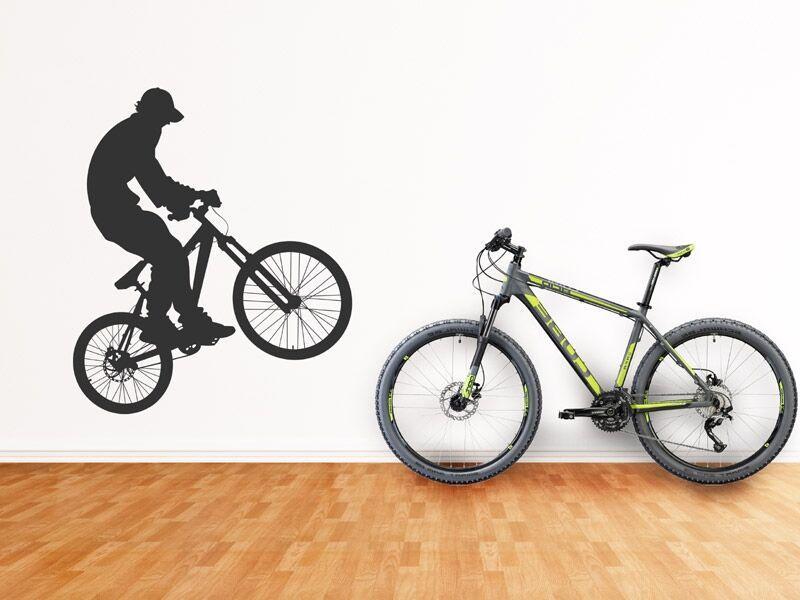 Biciklis falmatrica