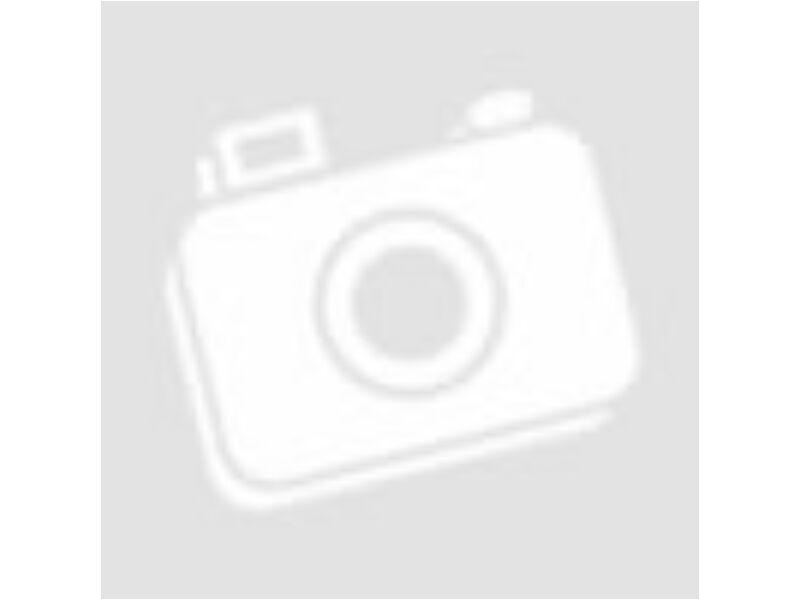Fradi logo színes falmatrica