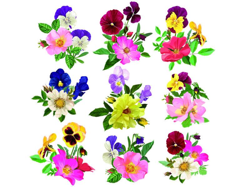 tavaszi virág csomag